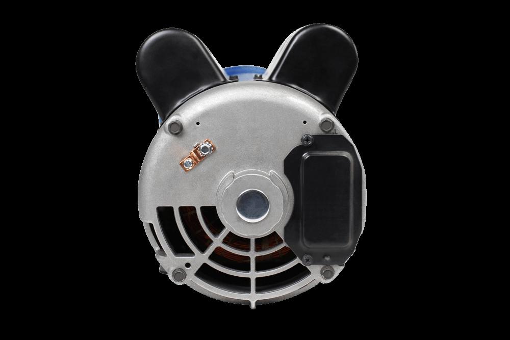 XP2-LE : Pump by Gecko Alliance