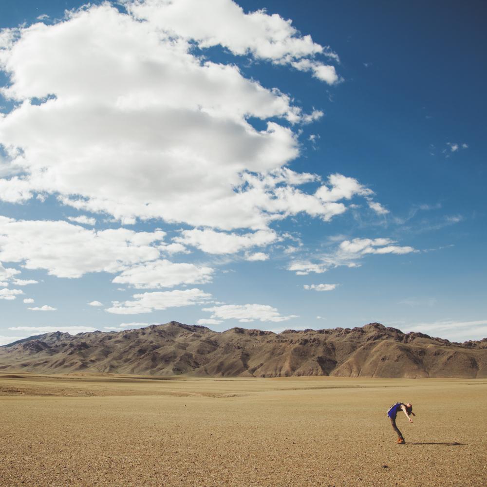 Fully open in the Gobi Desert, Mongolia