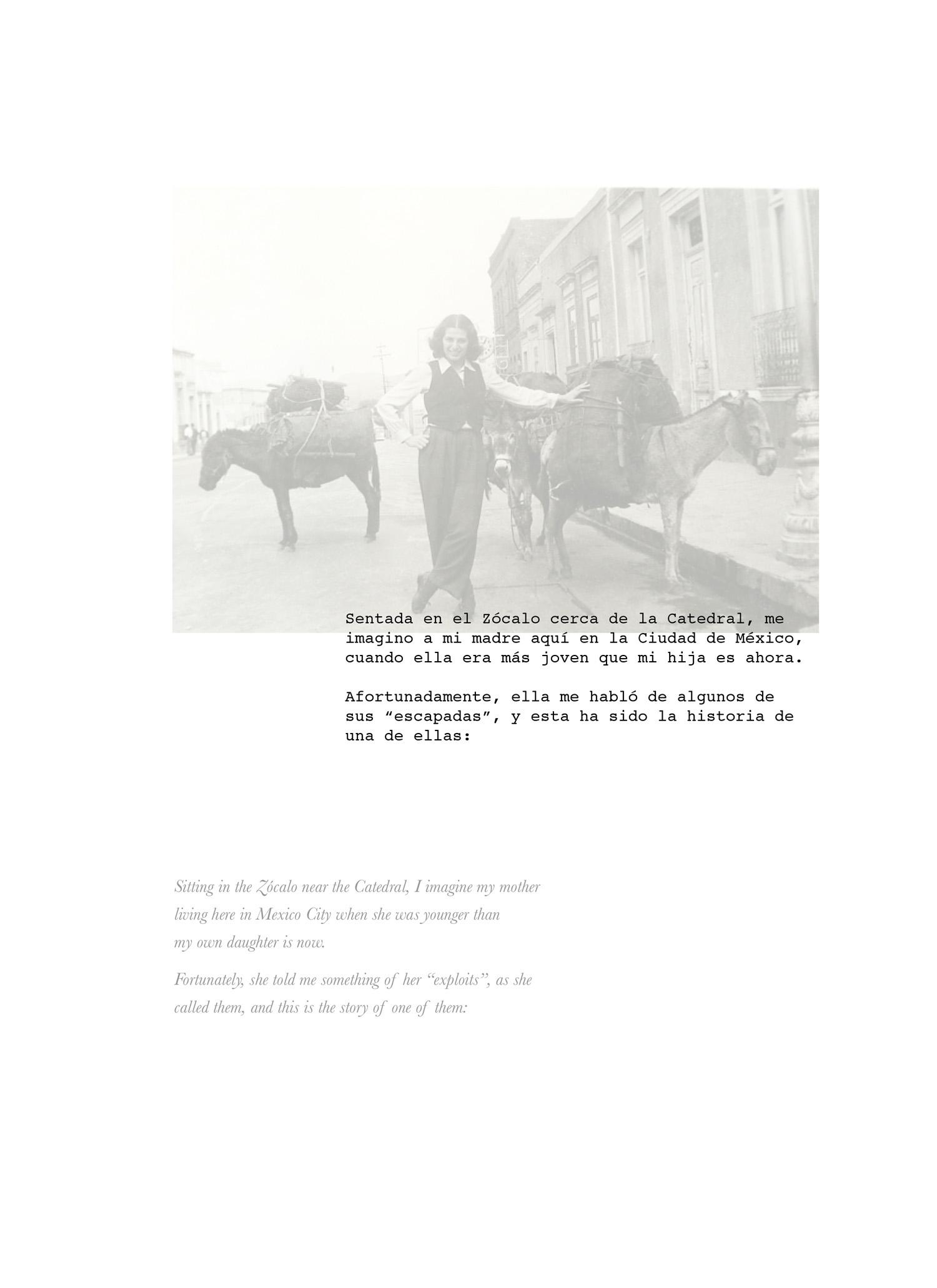 mexico book composite4.jpg