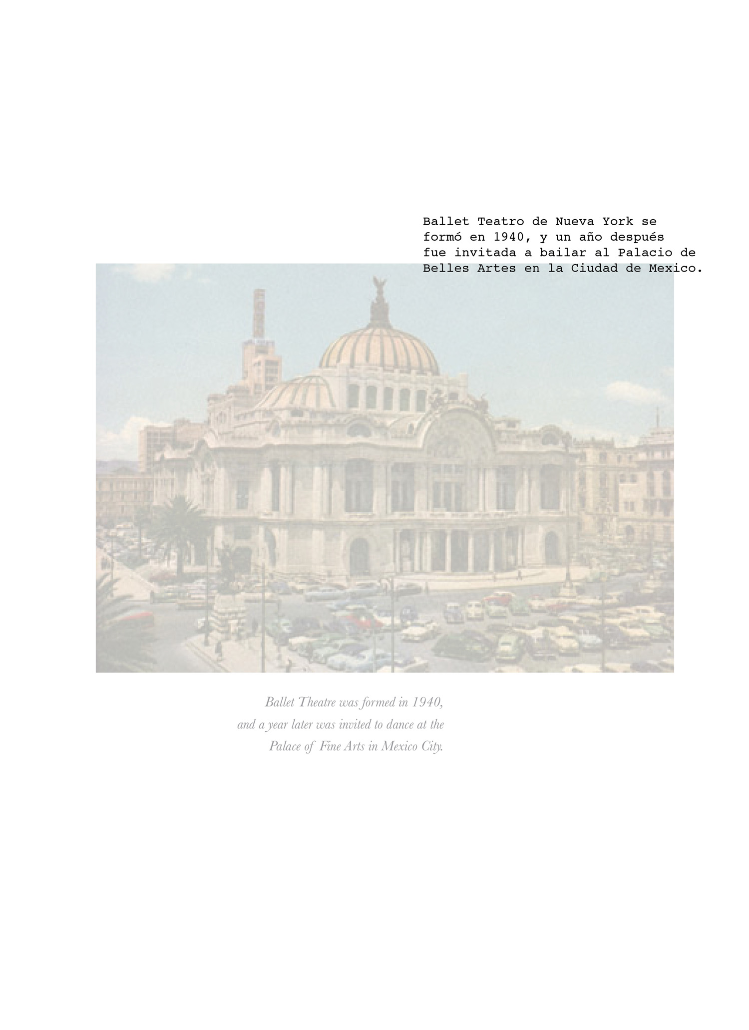 mexico book composite6.jpg