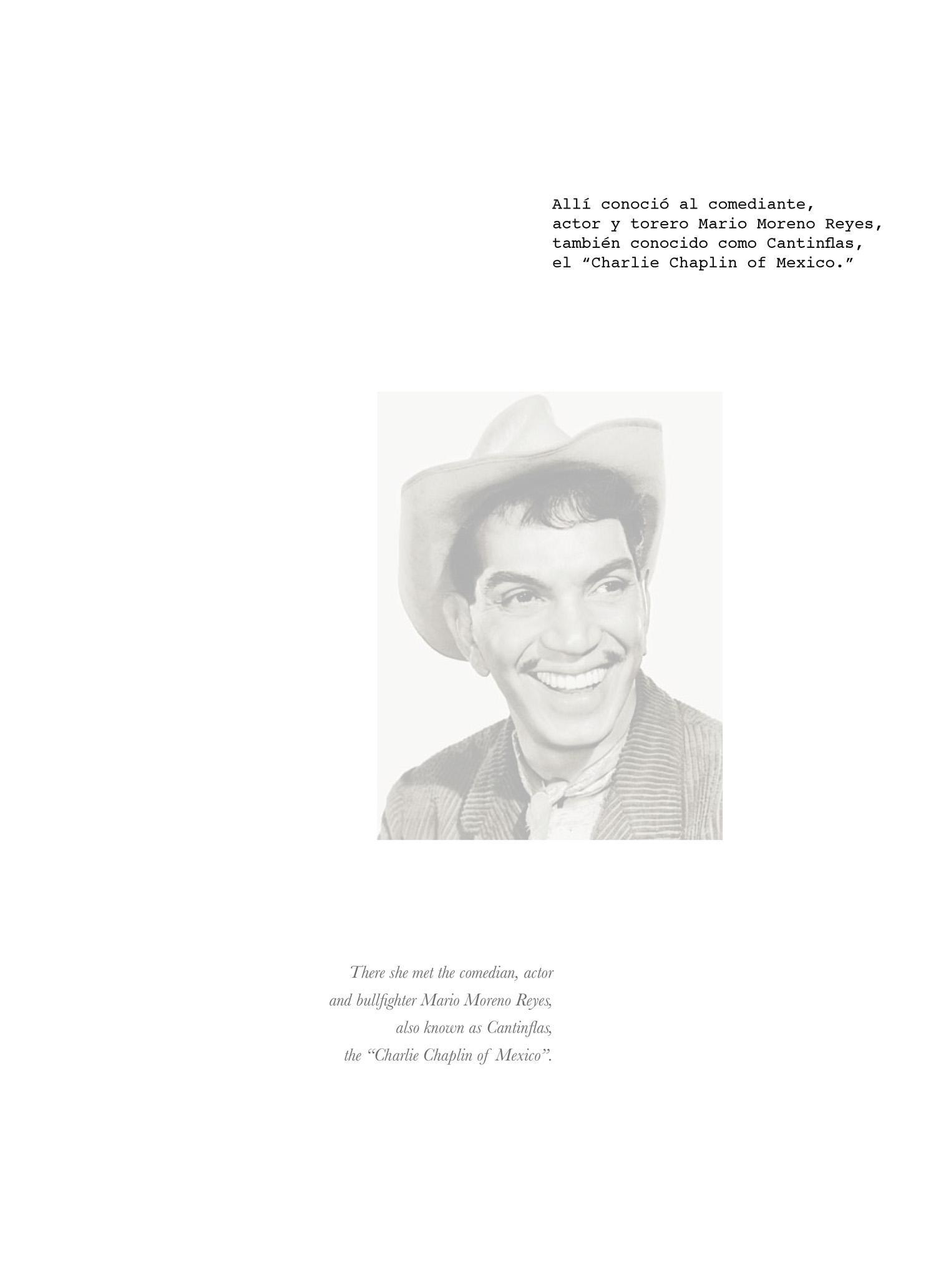 mexico book composite10.jpg