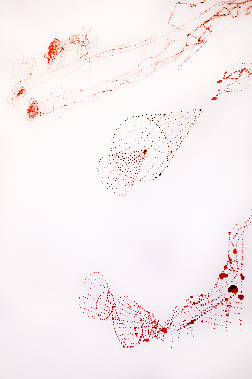 Vermilion Large Drawing, 2014 - detail.
