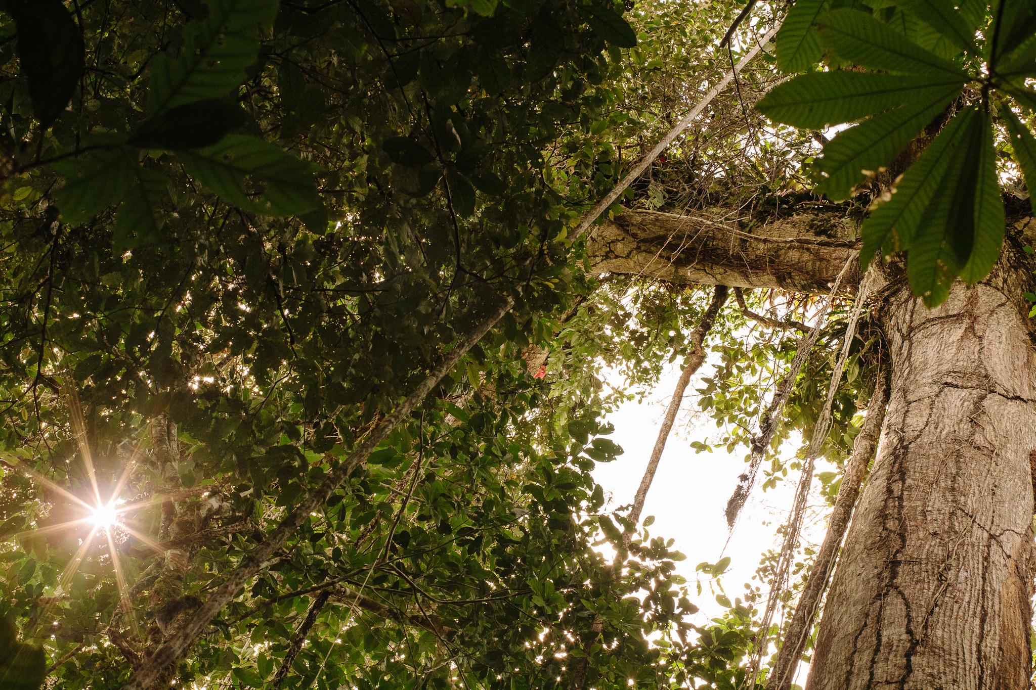 EcuadorQuito&Amazon_forwebsite2015_Jan2010_jenniferleahy-053.jpg
