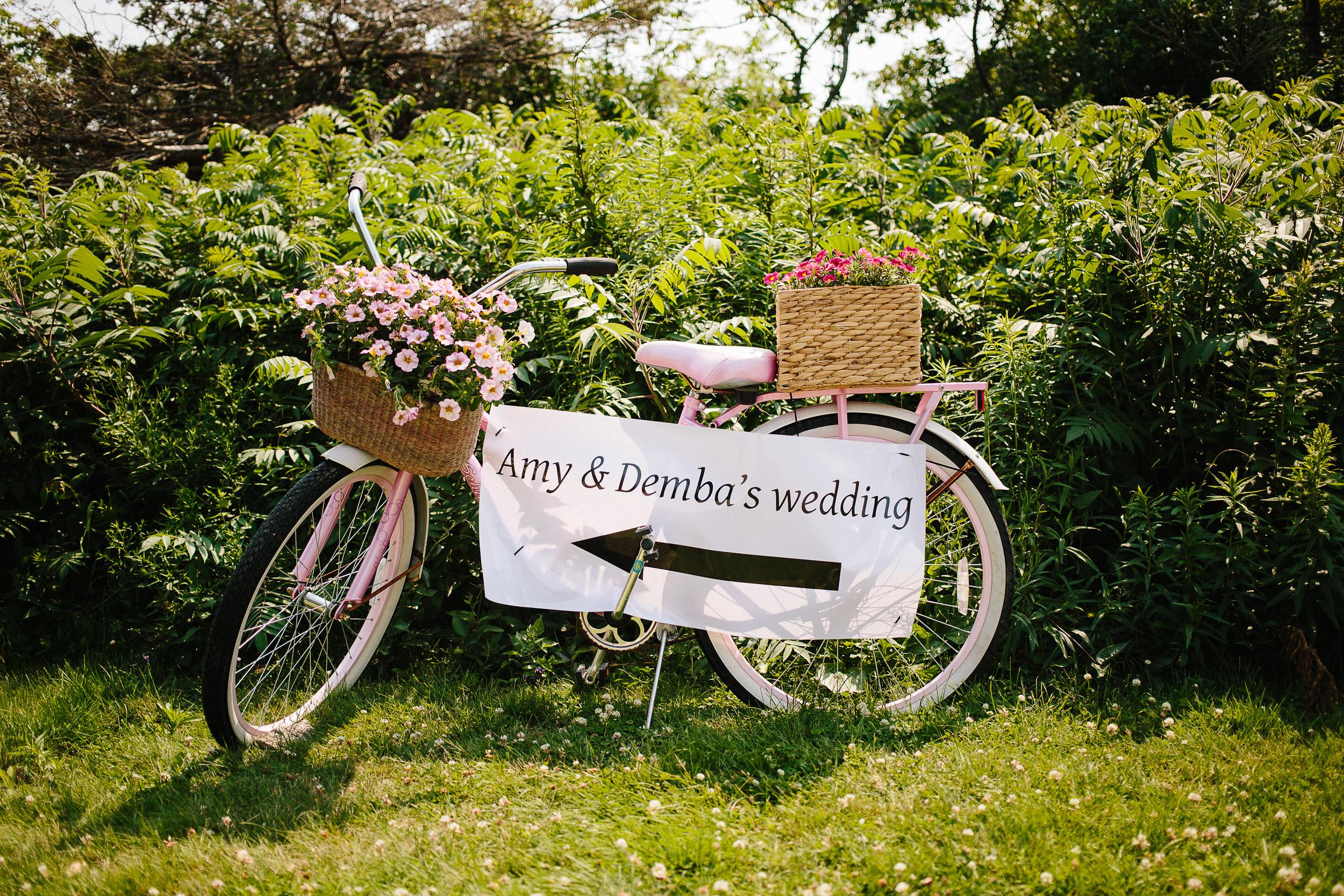 Amy&Demba_medprint_July2015_jenniferleahyphotography-020.jpg
