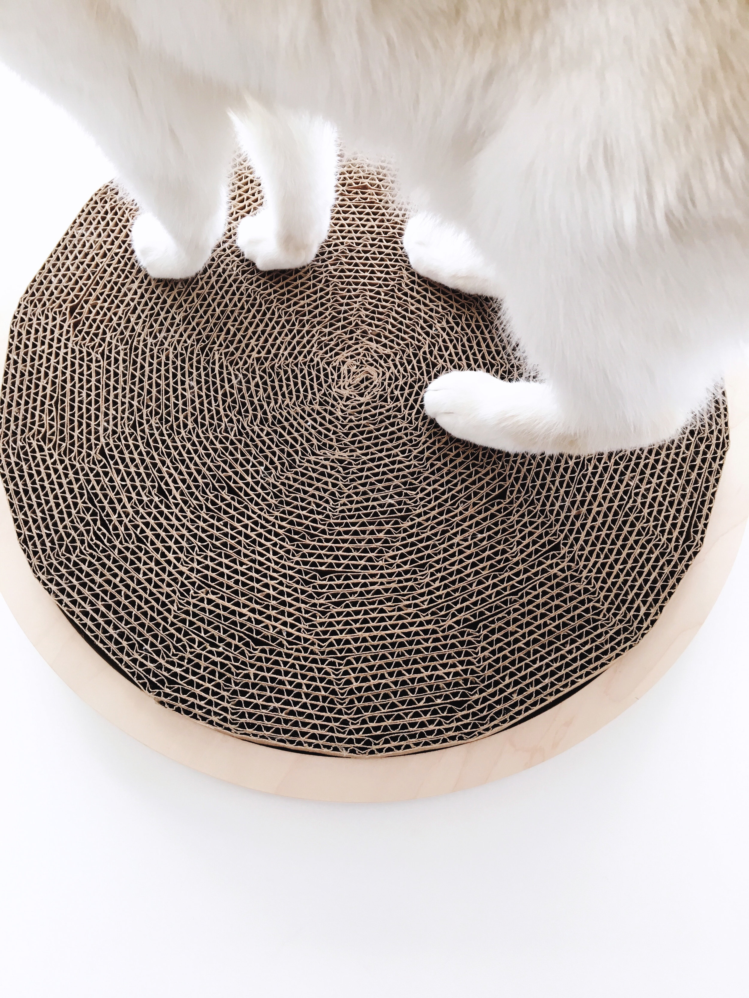 Recycled cardboard scratching mat in a handmade wooden frame