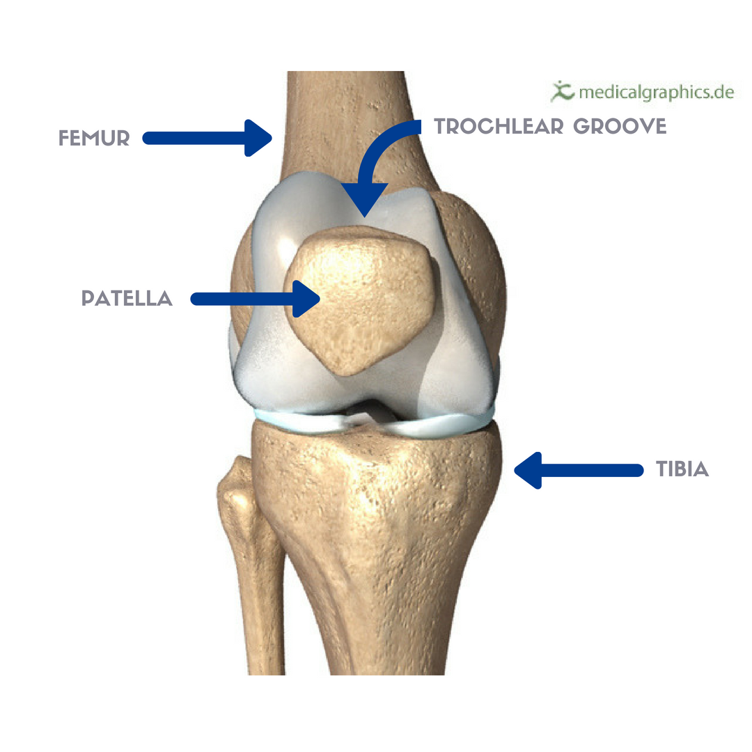 Runner's Knee Part 1: What Is Patellofemoral Pain Syndrome (PFPS) And Why  Is It Common In Runners? — Revive Sport & Spine