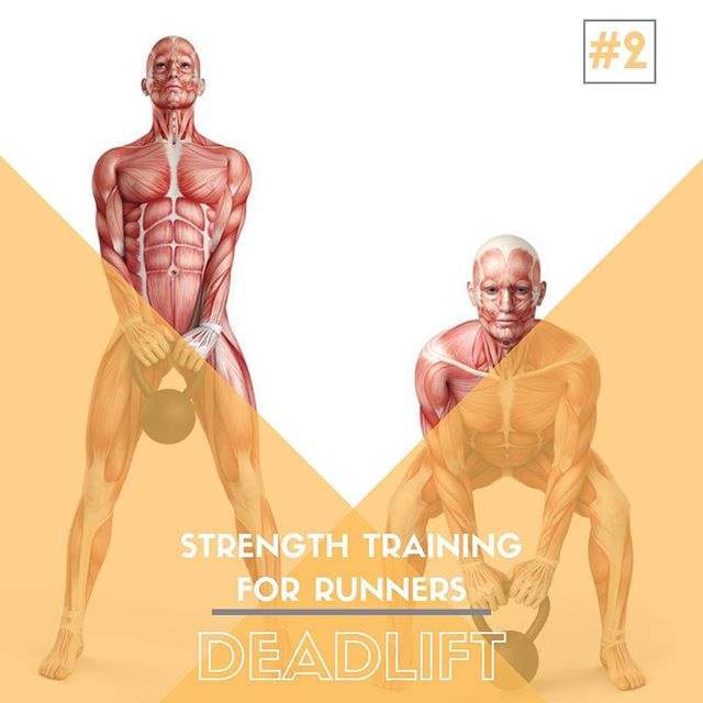 Strength Training For Runners - Exercise #2: DEADLIFT  If there is an exercise that runners avoid more than the squat, it is the deadlift.  It is challenging and intimidating, but will give you back 10 fold what you put in.  Our goal today is to help you understand the importance of form when deadlifting, and how to hip hinge.  From there, I personally think that everyone should aim for at least their body weight if not 1.5-2xs your body weight  as a goal....but this is also my favorite lift.  DEADLIFT PROGRESSION: Kneeling Hip Hinge ➡️ Kettlebell Hinge ➡️ Loaded Deadlift.  #runningstrenght #sportschiropractic #saltlakecity #therunnersfix