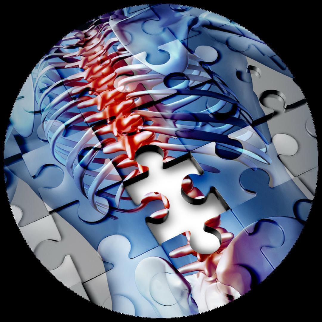 Sports-Chiropractic-Utah-Low-Back-Pain.png
