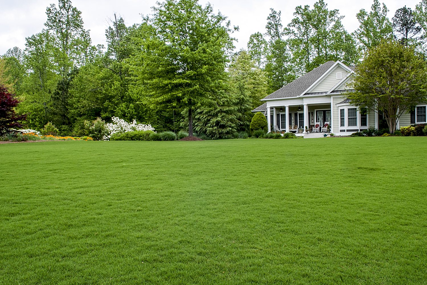 Organic Lawn Care - The HLC Organic Program provides 100% Eco-Friendly Lawn Care That Is Safe For Your Children & Pets. If You Want A Affordable Professional-Looking Lawn That Is Safe For Your Loved-Ones, Then HLC Organic Is For You!
