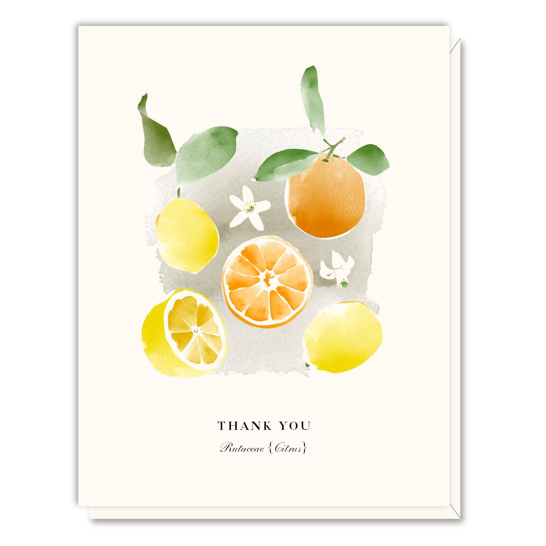 A059 Thank You Lemons.jpg