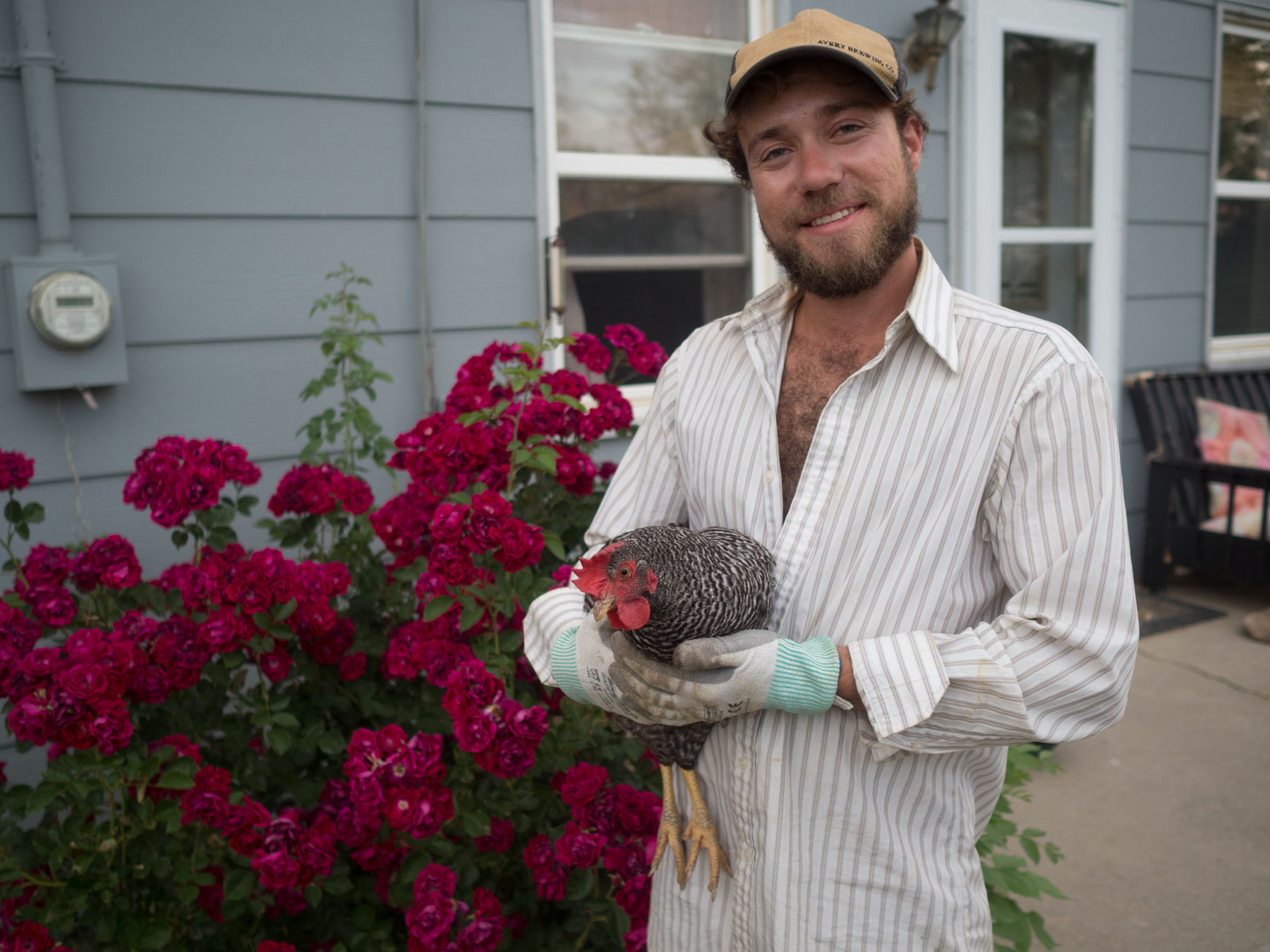 My husband and our chickens