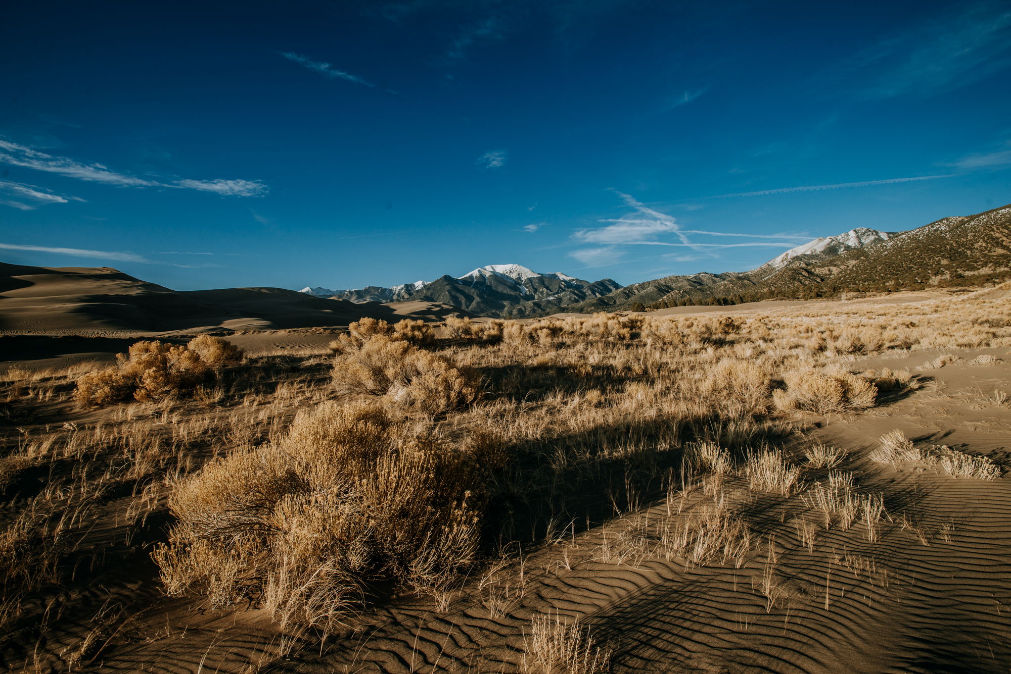 This wide angle photo shows the sand dunes and mountains in the background at Great Sand Dunes National Park.