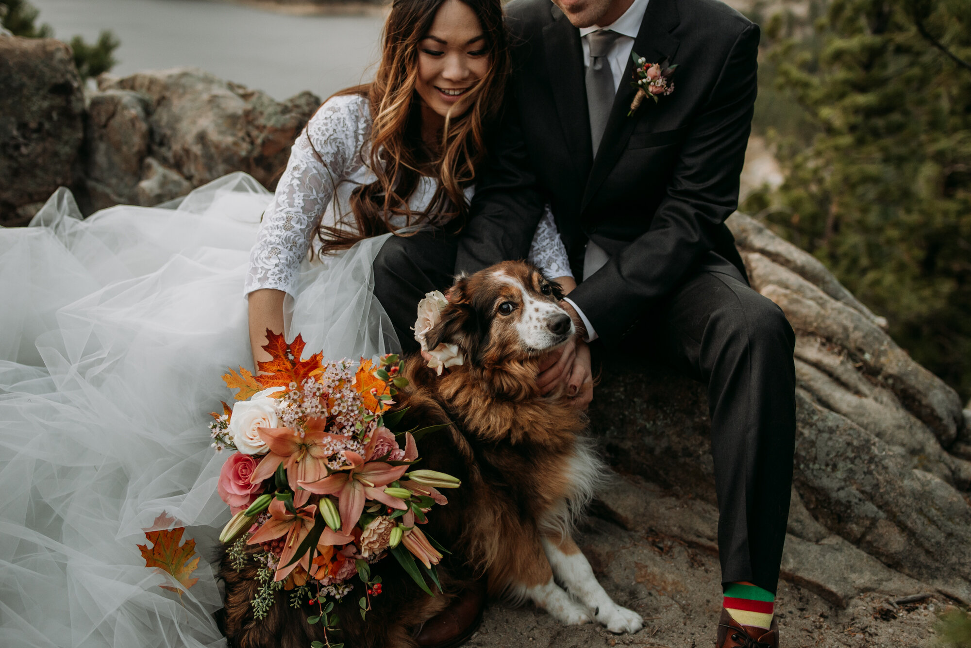 Tillye enjoyed this short hike but was less of a fan of her dog boutonnière!