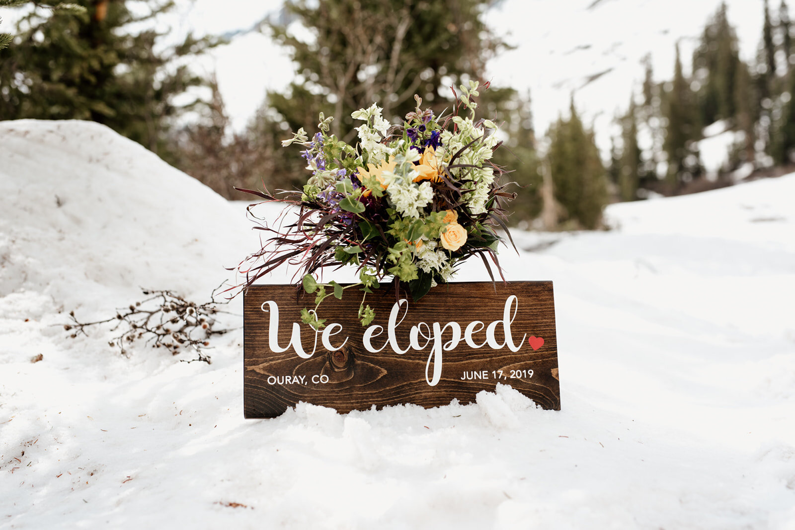 "A wooden sign reading ""we eloped!"" as a creative elopement announcement."