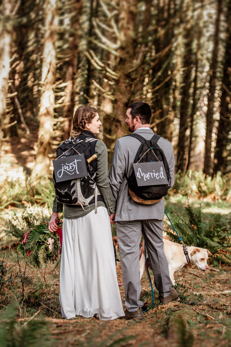 An Oregon coast hiking elopement with dogs.