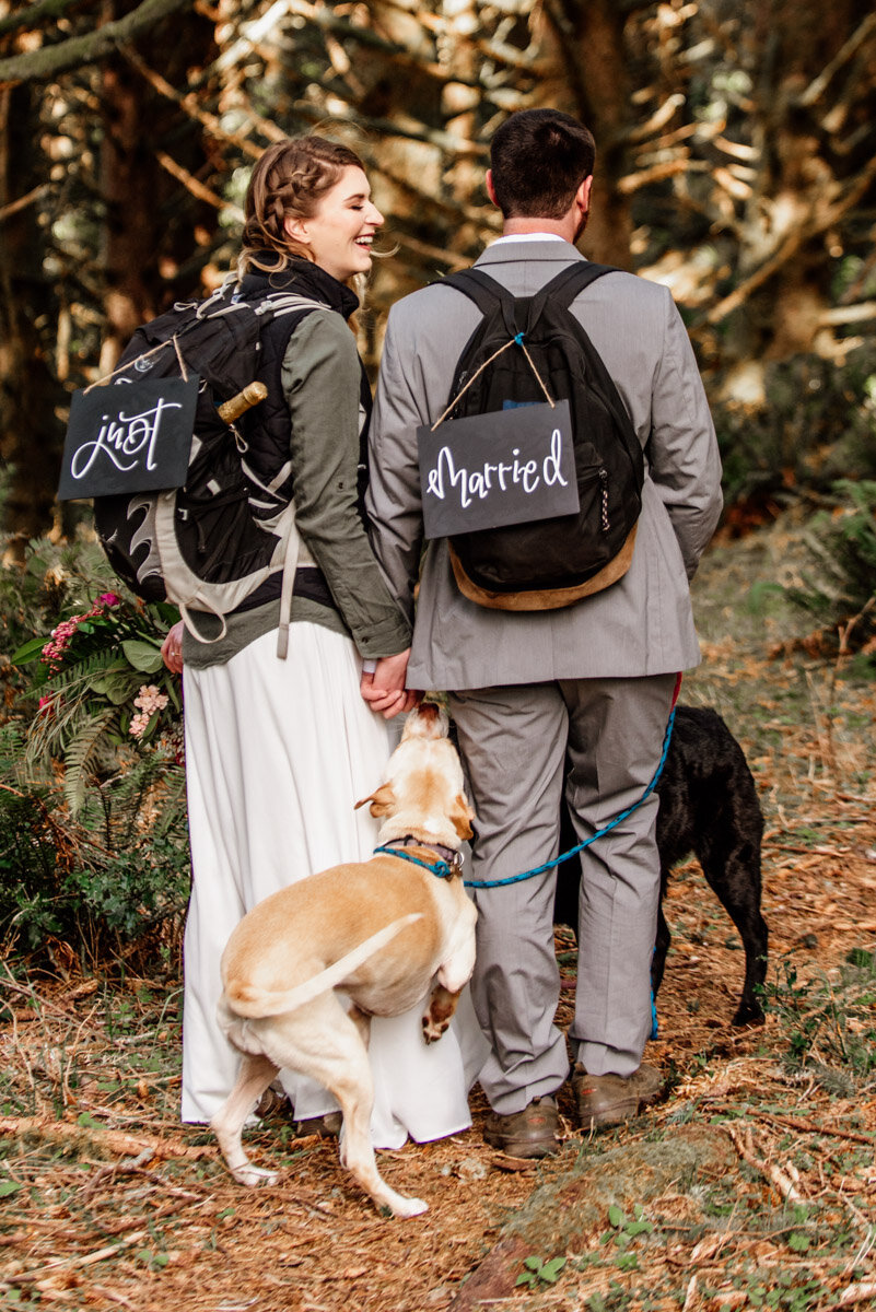 Eloping with dogs.