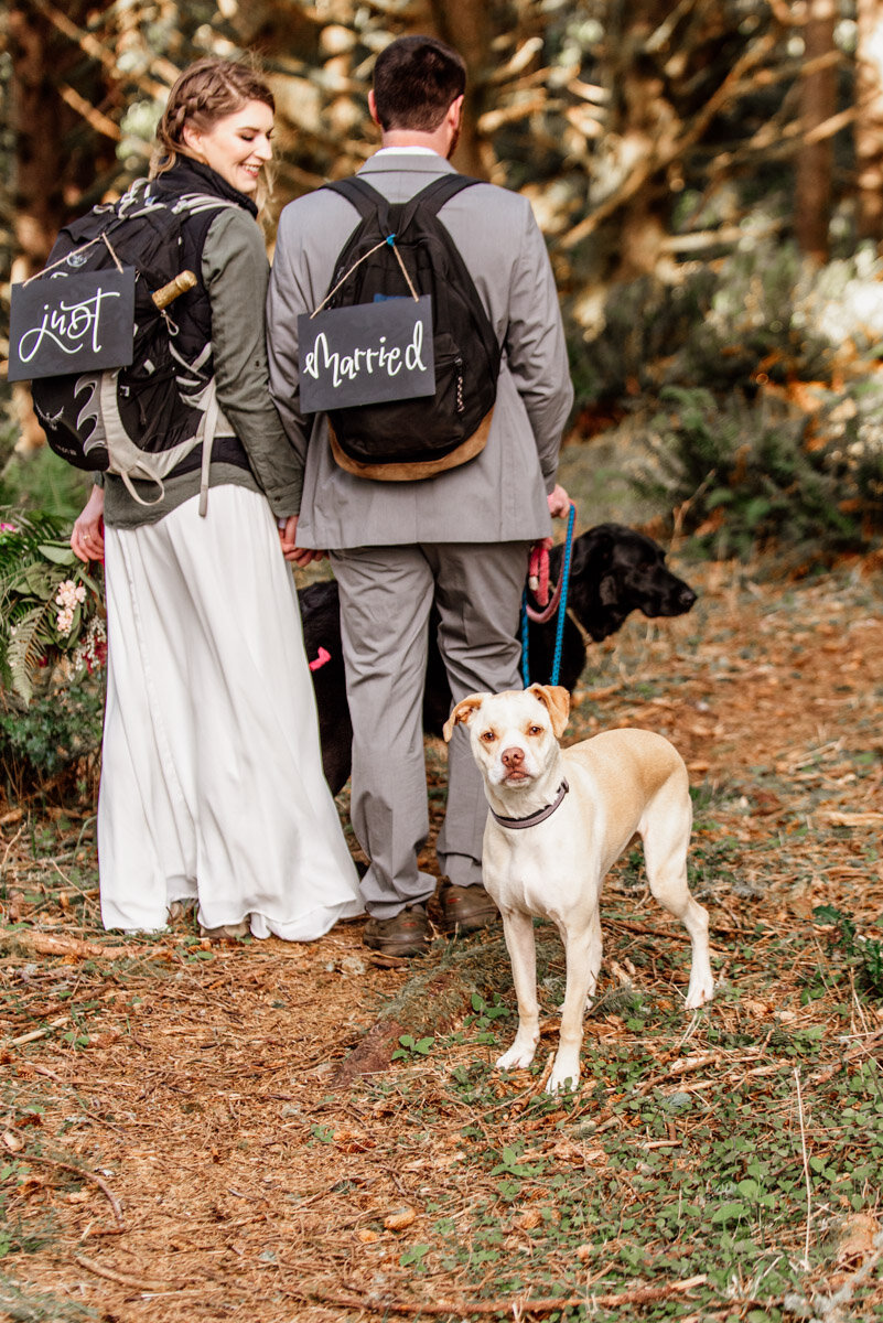 Meira the dog is so hiked to be included on the wedding day!