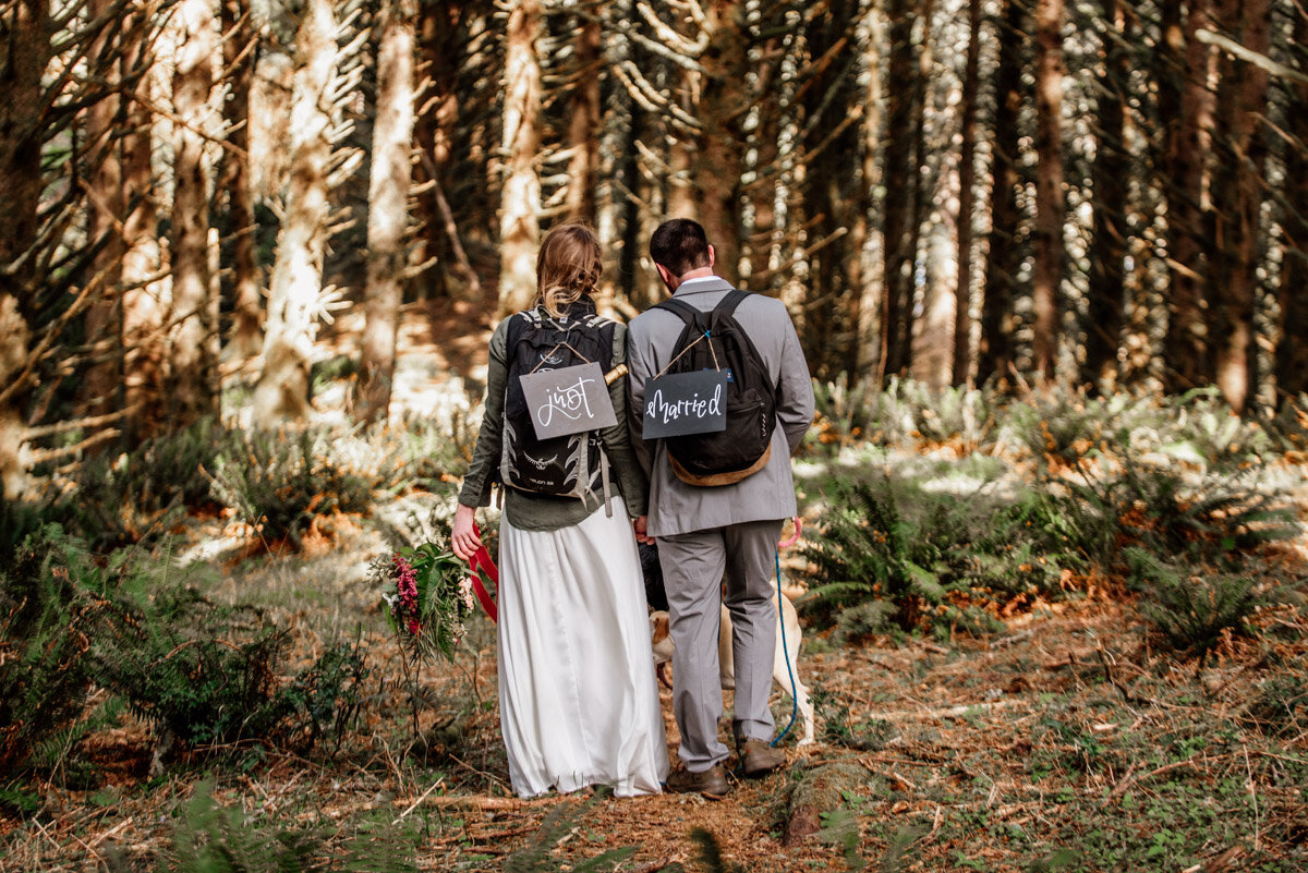 Just Married hiking elopement signs