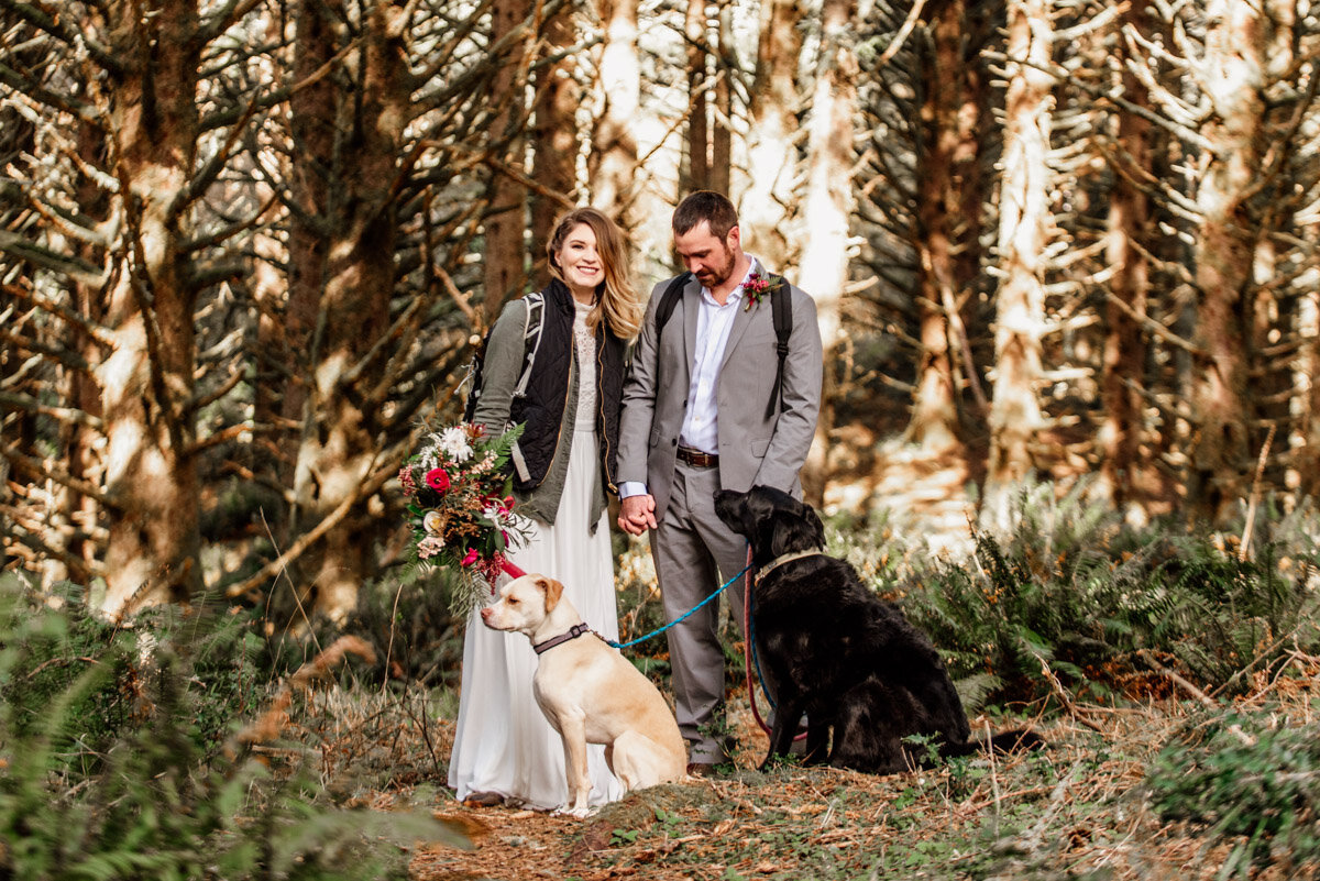 Hiking elopement with dogs.