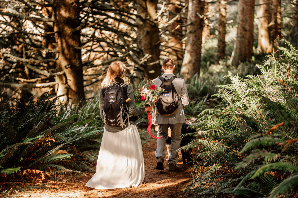 Backpacking elopement with dogs.