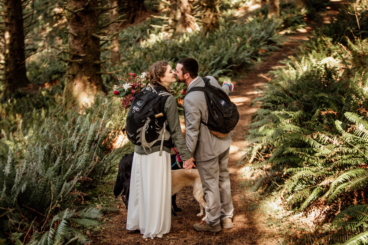 A pacific northwest hiking elopement with dogs.