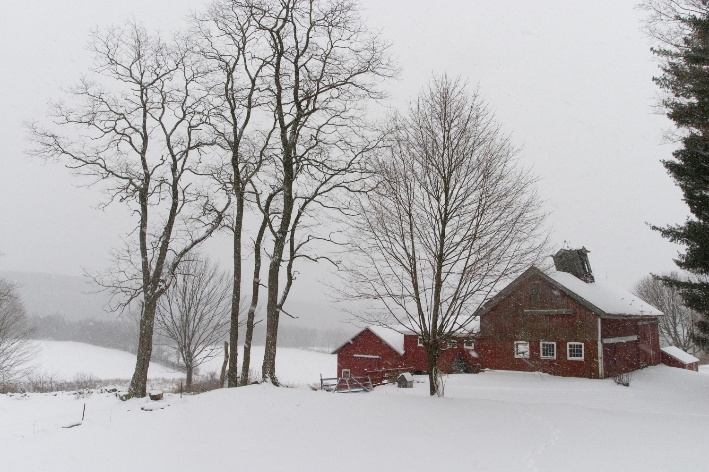 Red barns in snowstorm.jpg