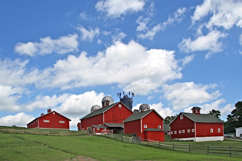 Happy Acres Farm3.jpg