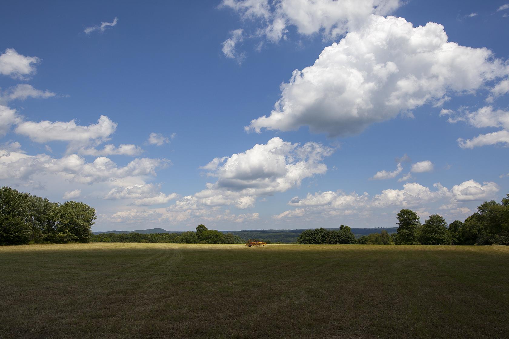 Top Pasture field_sm.jpg
