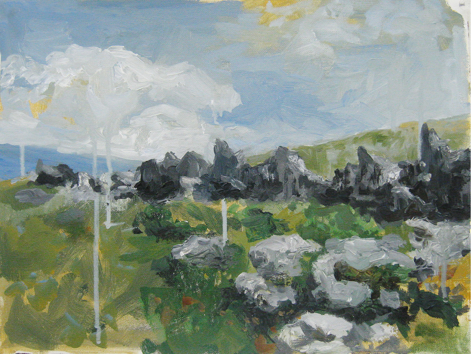 Landscape Study  2011 11x18  acrylic on canvas