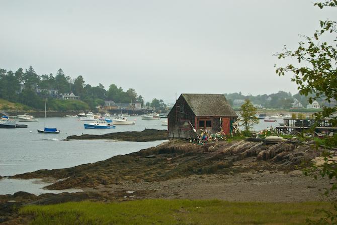 Maine-trip-day3-Naomi-VanDoren 3