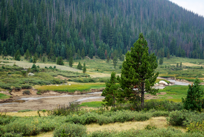 Colorado-Rocky-Mountain-Park-Naomi-VanDoren 4