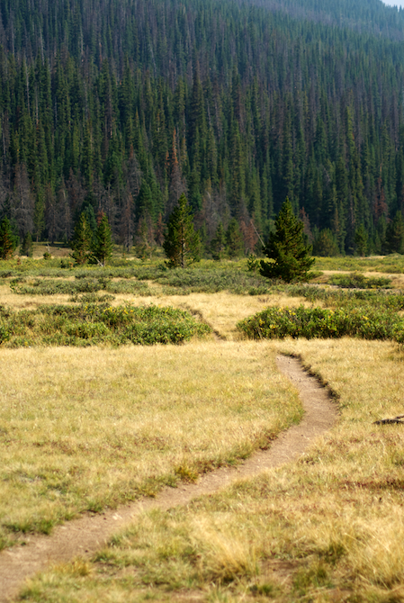 Colorado-Rocky-Mountain-Park-Naomi-VanDoren 6