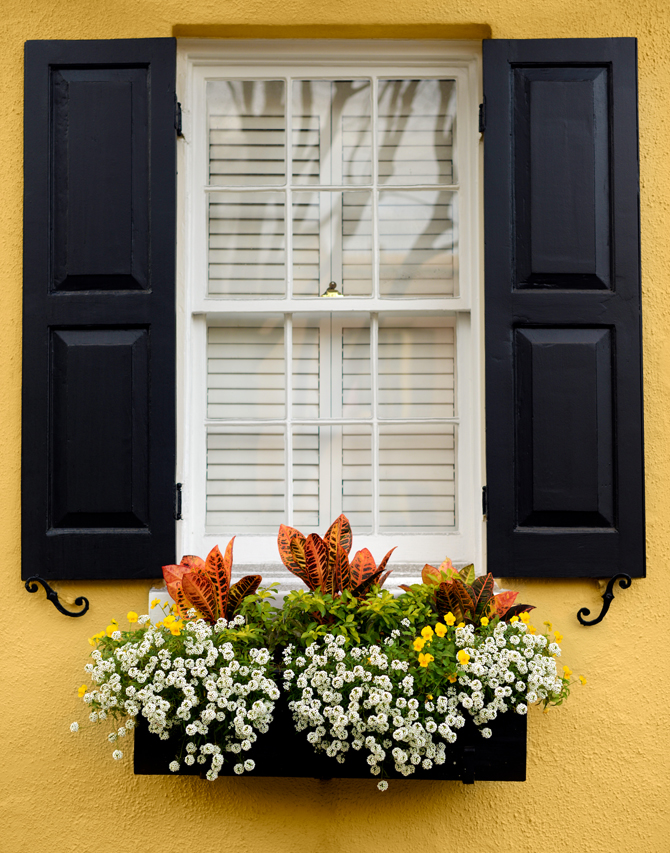 Charleston-Downtown-Walk-Naomi-VanDoren