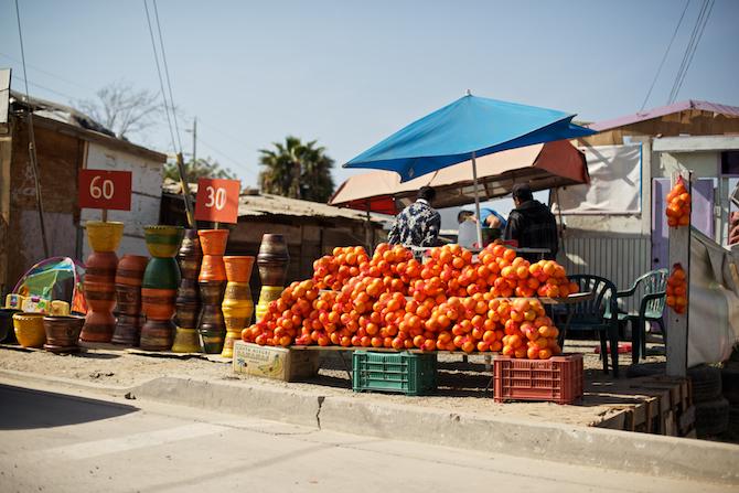 Ensenada-Mexico-church-missions-trip-Naomi-VanDoren 52