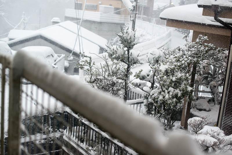 Snow Day Japan Naomi VanDoren-2