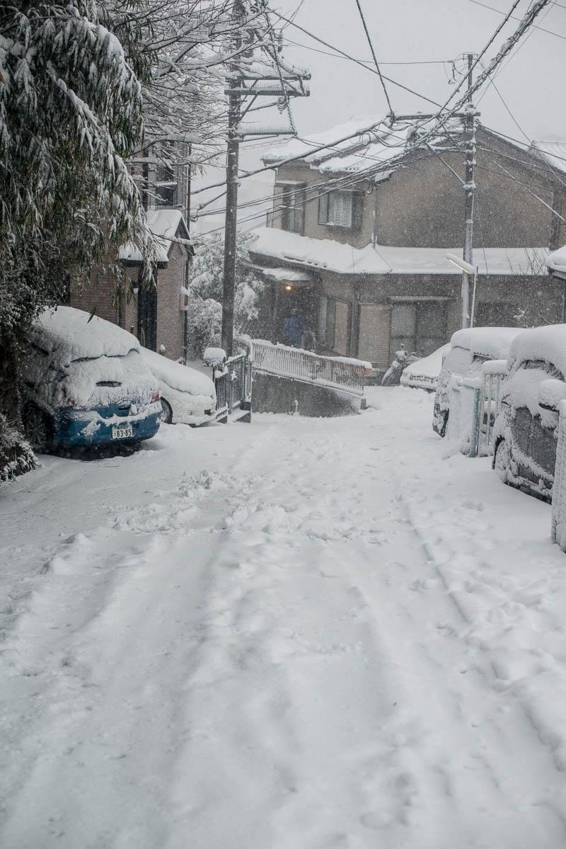 Snow Day Japan Naomi VanDoren-3