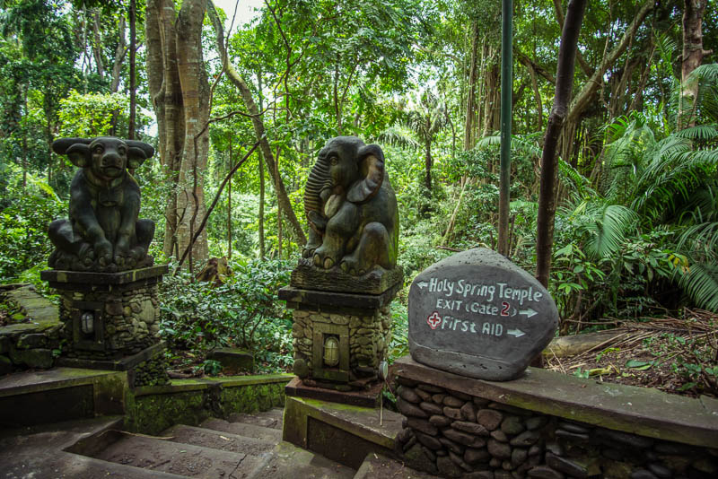 Ubud Moneky Park Indonesia Naomi VanDoren-4