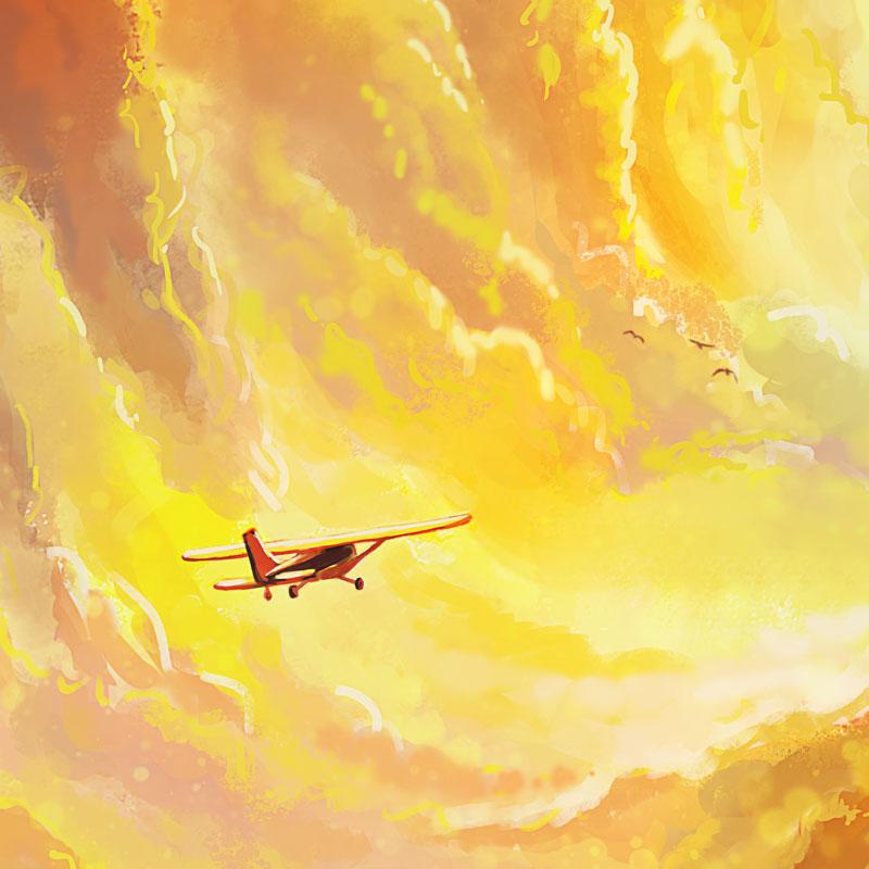 Flying-Home-Naomi-VanDoren-detail1.jpg