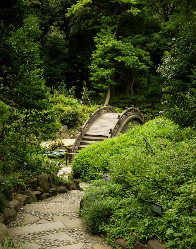 Koishikawa-Korakuen-Gardens-Japan-Tokyo-Naomi-VanDoren 10.jpg