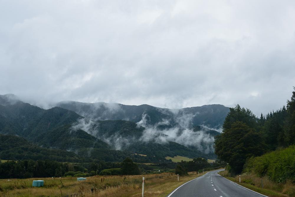 New Zealand Travel D1 Naomi VanDoren-9.jpg