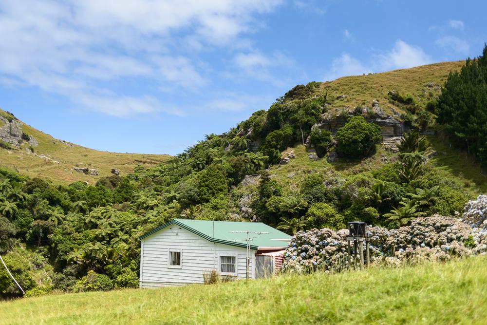 New Zealand Travel D2 Naomi VanDoren-5.jpg