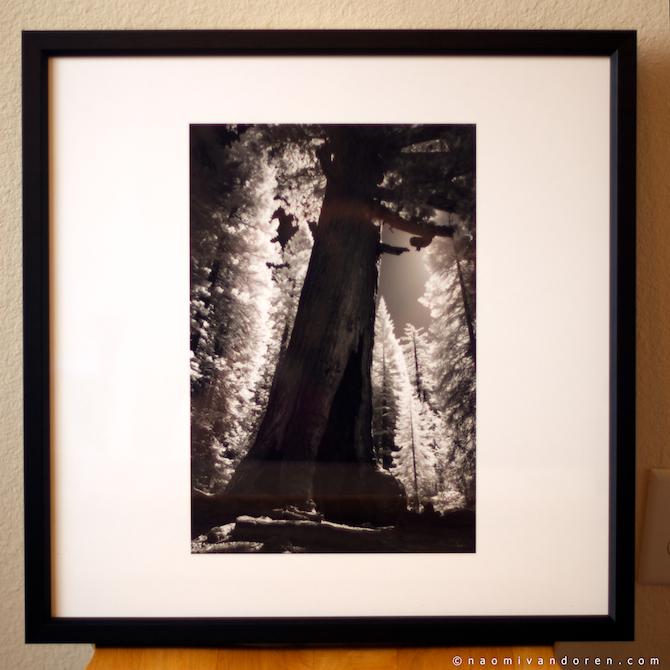Society6-Framed-Print-Review-Naomi-VanDoren 5.jpg