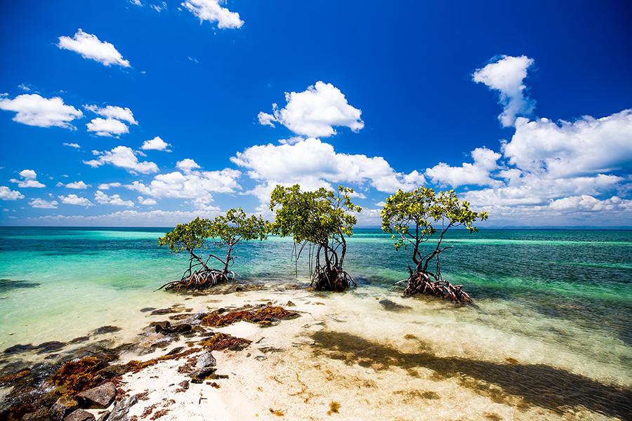 san-ignacio-resort-photographer