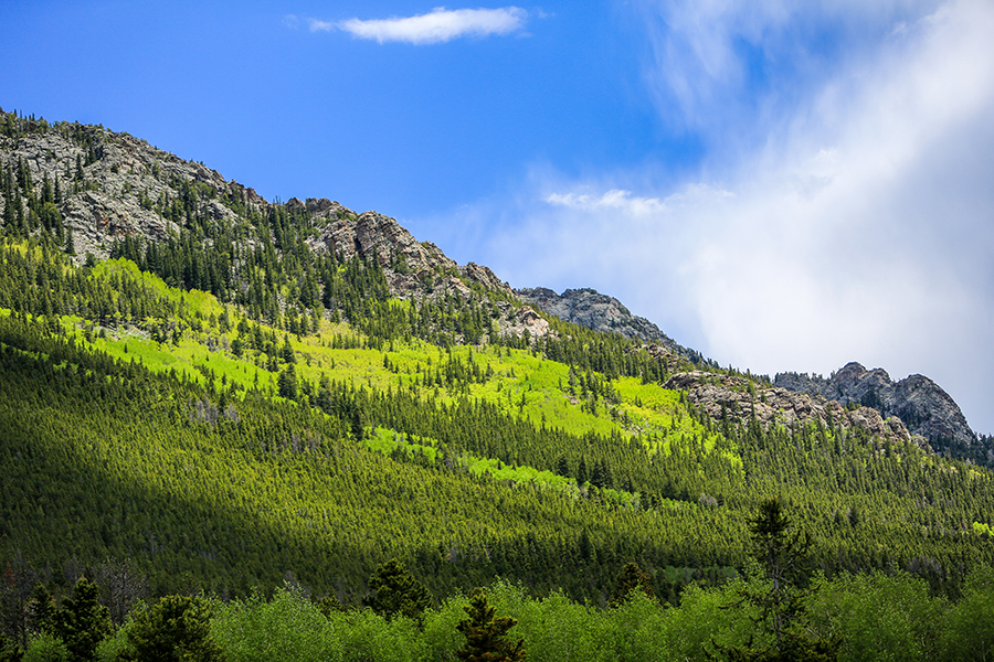 estes-park-resort-photographer