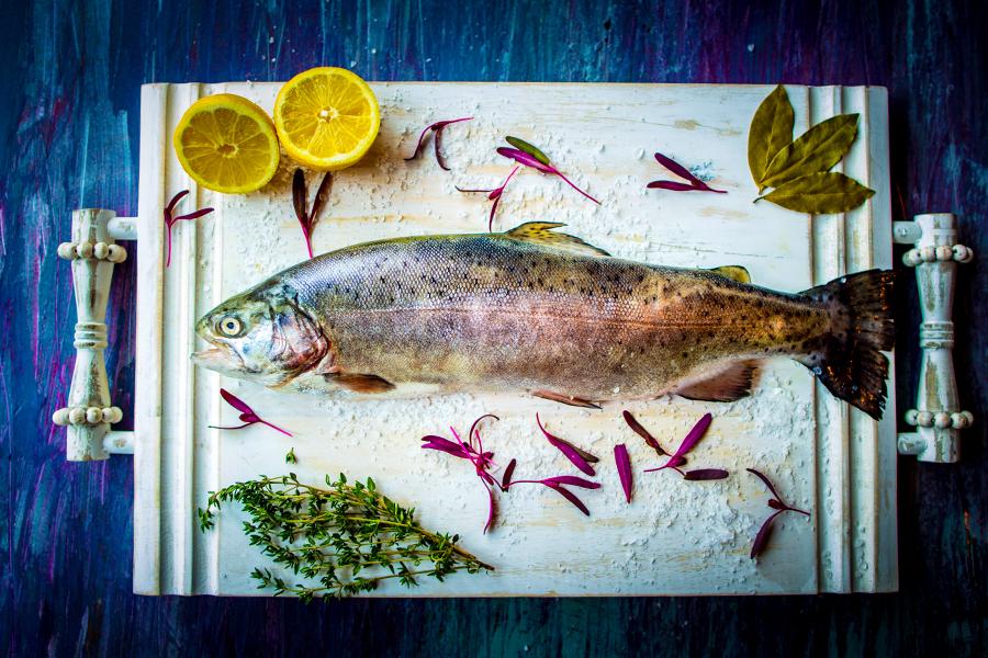 minneapolis-food-photographer