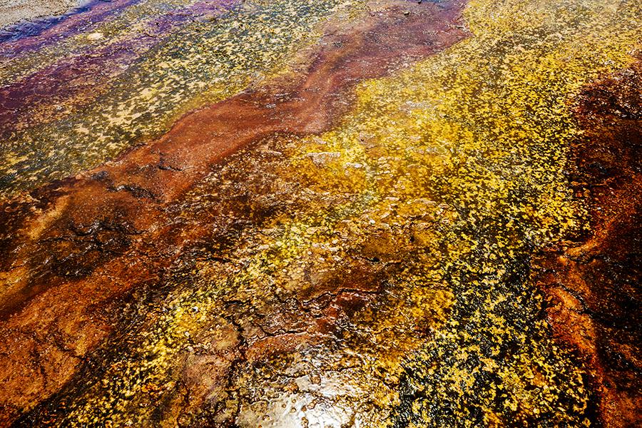 yellowstone-national-park-photos