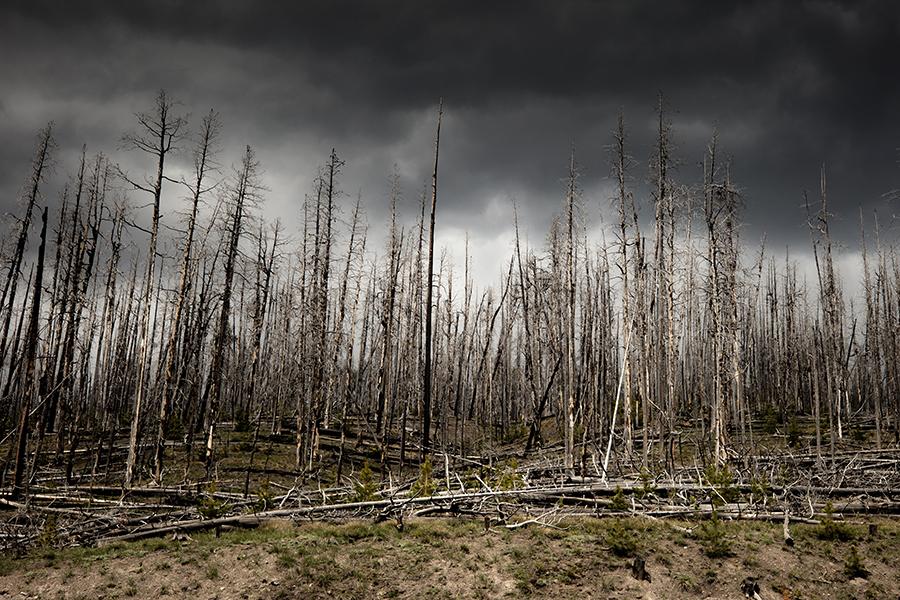 colorado-national-park-photographer