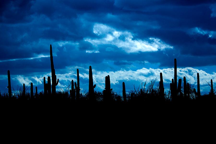 new-mexico-resort-photographer