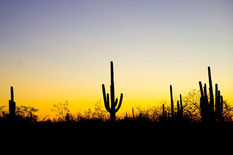 best-texas-resort-photographer