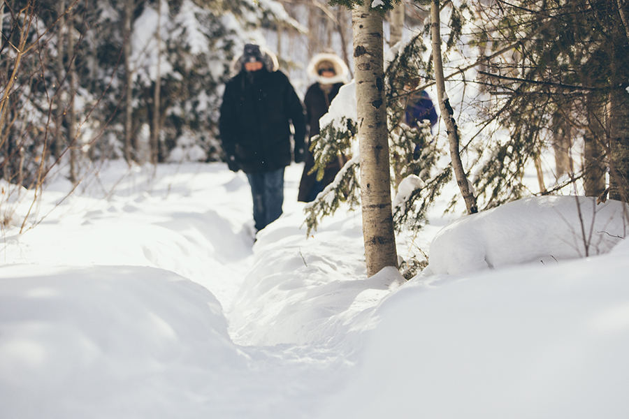 gfl_winter-493.jpg
